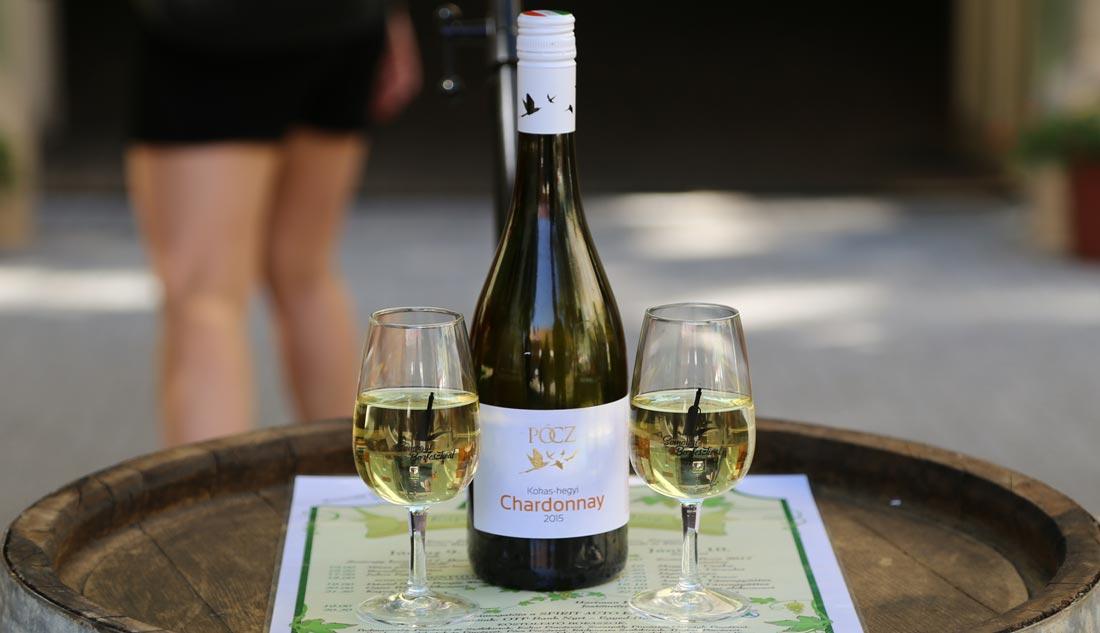 Kokas-hegyi Chardonnay lett Somogy Bora